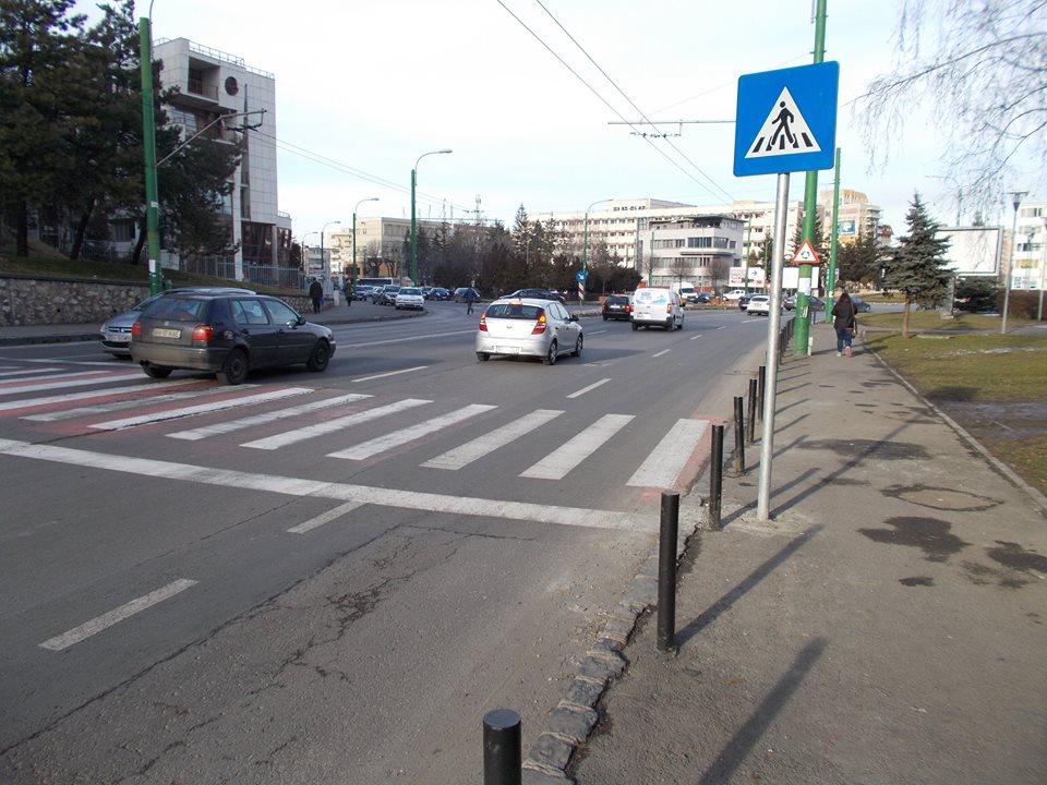 linie de oprire pe Carpatilor