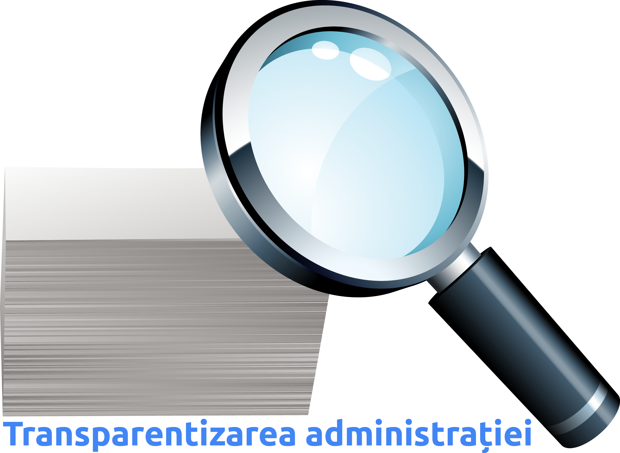 transparentizarea administratiei - proiect Visum